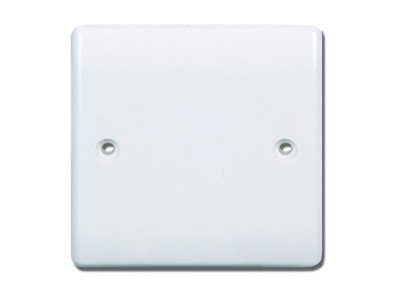 Single Blank Plate
